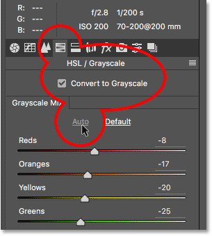 Converting the photo to black and white in the HSL / Grayscale panel.