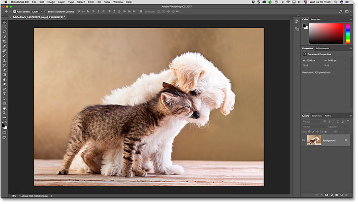 The Adobe Photoshop interface.