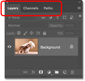A panel group in Photoshop containing the Layers, Channels and Paths panels.