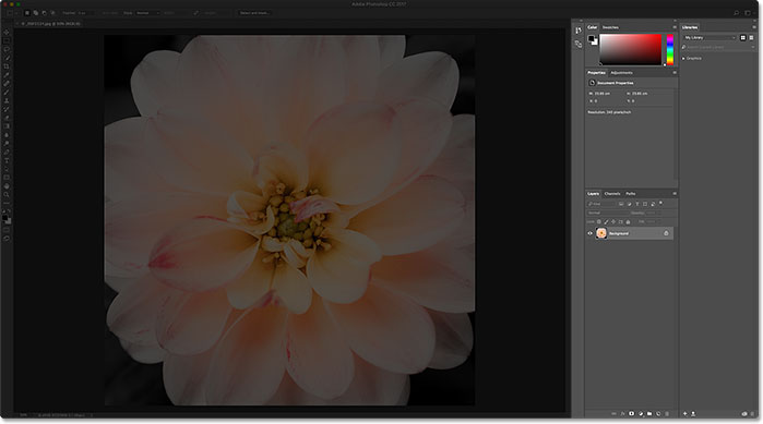 The panels along the right of the Photoshop interface. Image © 2016 Steve Patterson, Photoshop Essentials.com