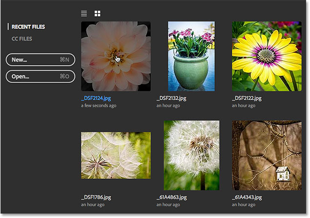 Selecting the same image as last time. Image © 2016 Steve Patterson, Photoshop Essentials.com