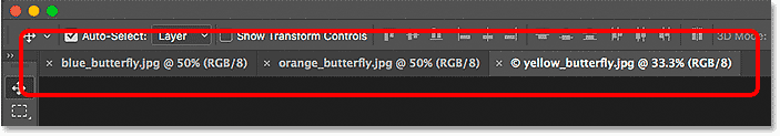 The document tabs in Photoshop.