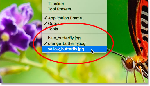 A list of open documents appears in the Window menu in Photoshop.