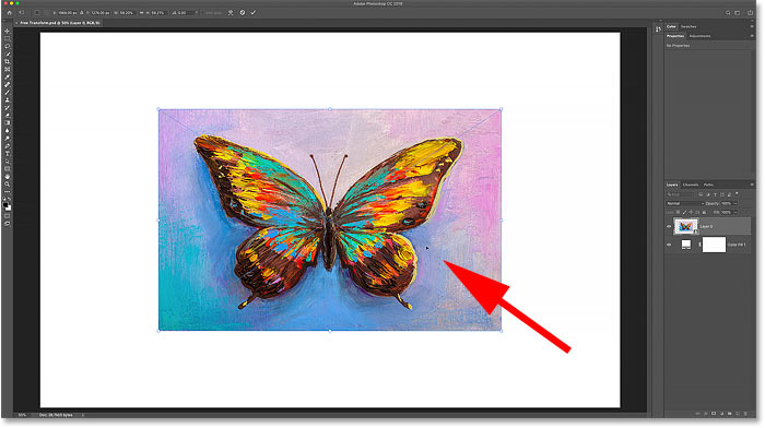 How to move images using Photoshop's Free Transform command