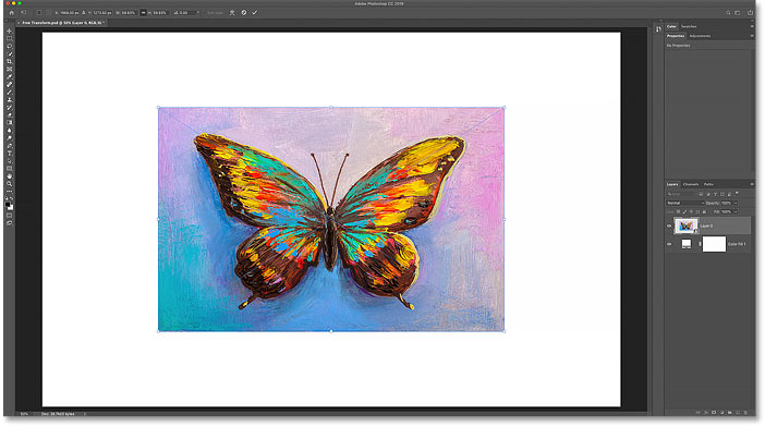 Scaling the image to the new size with Free Transform in Photoshop