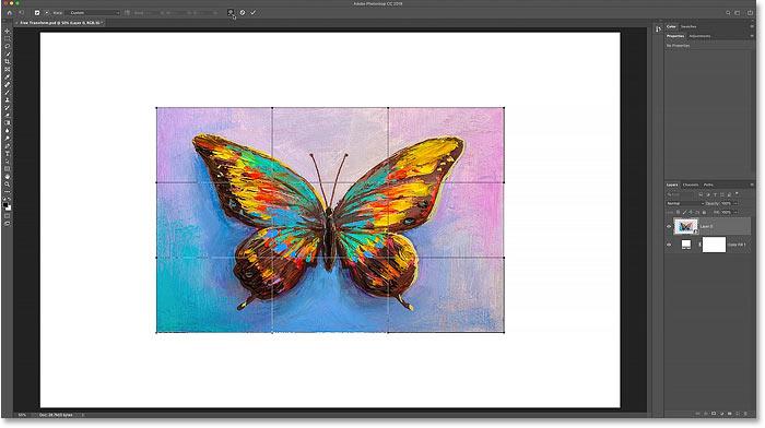 The Warp transform box in Photoshop