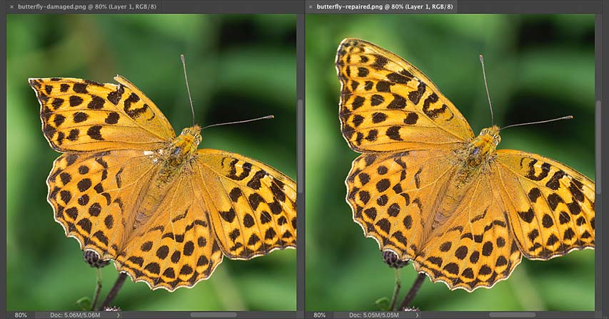 How to use Content-Aware Fill in Photoshop