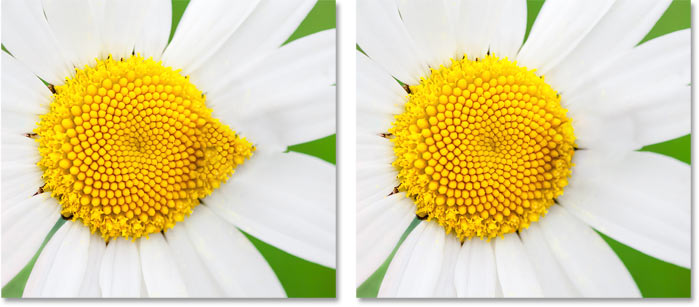 A comparison of the Rotation Adaptation results in the Content-Aware Fill workspace in Photoshop