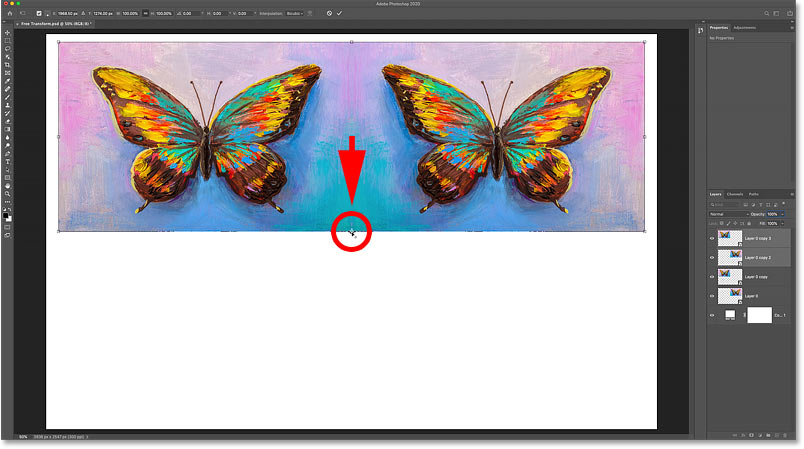 Moving the Free Transform Reference Point onto the bottom handle in Photoshop