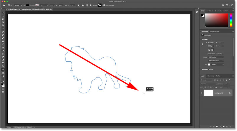 Drawing one of the new custom shapes in Photoshop CC 2020