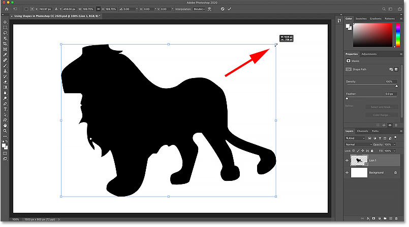 Resizing the shape with Free Transform in Photoshop