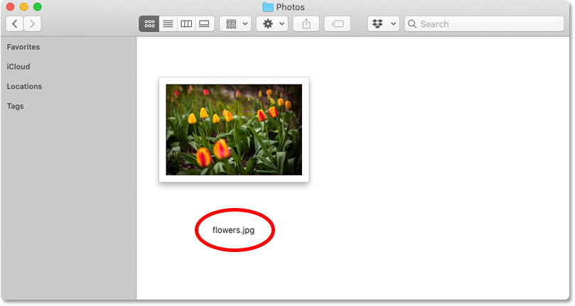 JPEG images now open automatically into Photoshop in Windows 10.