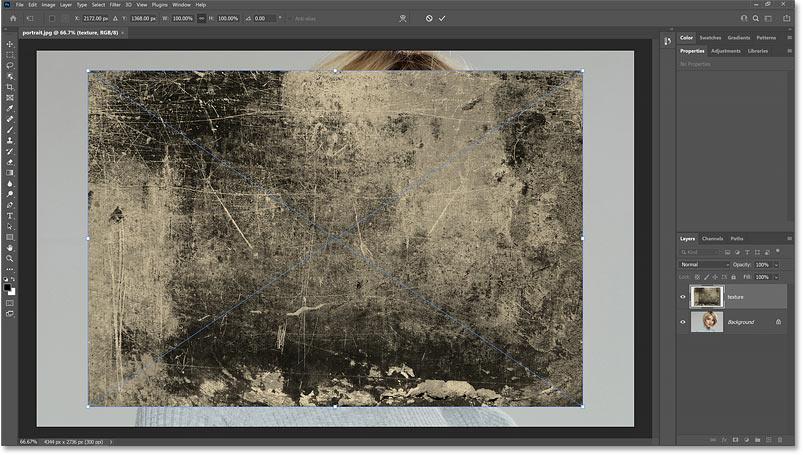 第二张图像在与第一张图像相同的 Photoshop 文档中打开