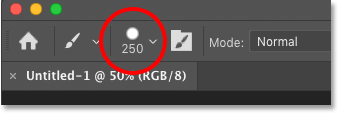 The Options Bar showing the current brush size in Photoshop