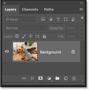 Photoshop Layers panel showing the original photo on the Background layer
