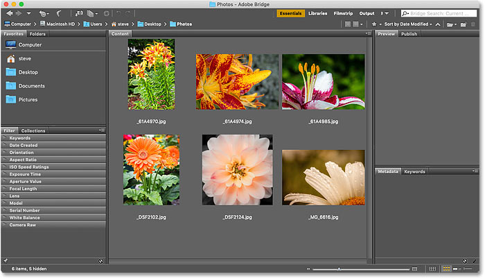 Navigating to the images in Adobe Bridge