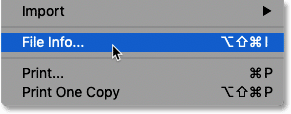 Selecting the File Info command in Photoshop