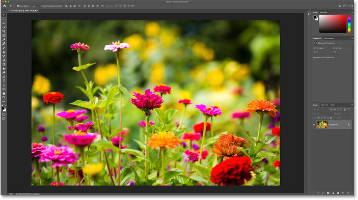 Opening an image in Photoshop. Photo credit: Steve Patterson.
