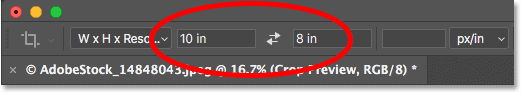 Cropping the photo to a specific width and height in inches