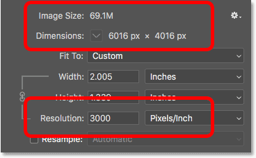 Increasing the image resolution did not change the pixel dimensions or file size of the image