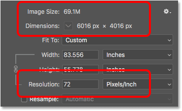 Lowering the image resolution did not change the file size or the pixel dimensions
