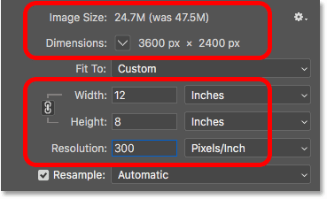 Downsampling the image decreases the image size