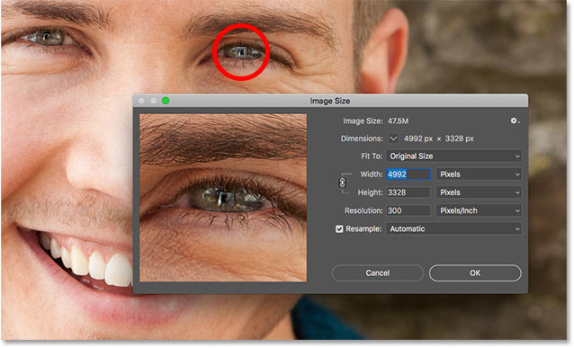 How to center the image inside the Image Size preview window in Photoshop