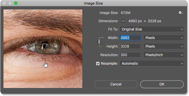 How to scroll the image inside the Image Size preview window in Photoshop
