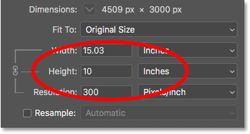 The current width of the image, in pixels, in the Image Size dialog box in Photoshop