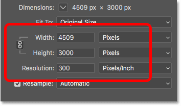 The Width, Height and Resolution options in the Image Size dialog box in Photoshop