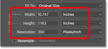 The current print size of the photo in the Image Size dialog box in Photoshop