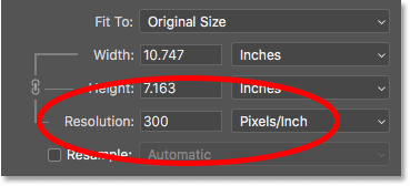 The current image resolution in Photoshop's Image Size dialog box