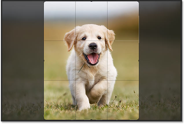 Cropping the image to the new aspect ratio in Photoshop