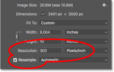 Resampling the image to 300 pixels/inch in Photoshop