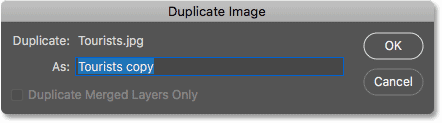 The Duplicate Image dialog box in Photoshop