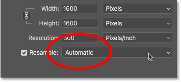 Setting the interpolation method to Automatic for downsampling pixel art in Photoshop