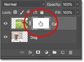 The highlight border around the thumbnail tells us that we have the layer mask selected.