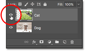 Clicking the visibility icon for the Cat layer.