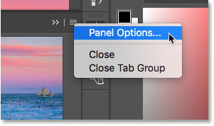 Opening the Navigator panel options
