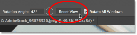Resetting the view for both images at once in Photoshop