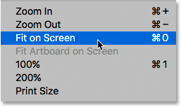 The Fit on Screen option under the View menu.