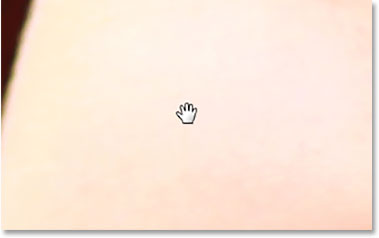 The mouse cursor icon for the Hand Tool.