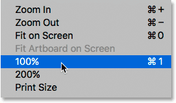 Selecting the 100% option from under the View menu.