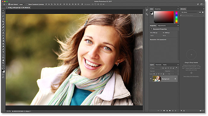 Zooming And Panning Images In Photoshop