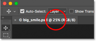 The document tab displaying the current zoom level of the image in Photoshop.