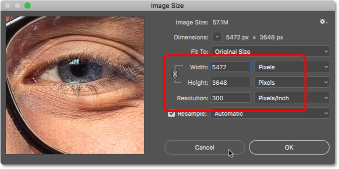The width, height and resolution of the open document in the Image Size dialog box