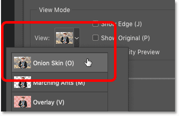 Setting the view to Onion Skin in Photoshop's Select and Mask workspace