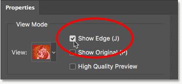 The Show Edge option in the Properties panel in Select and Mask