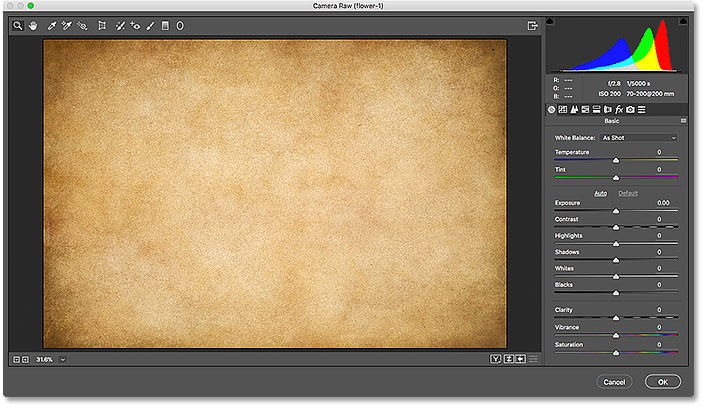The Camera Raw Filter in Photoshop CC