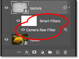 The Layers panel showing the Camera Raw Filter smart object in Photoshop